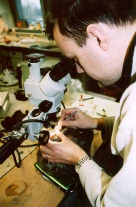 Archeologie en andere wetenschappen